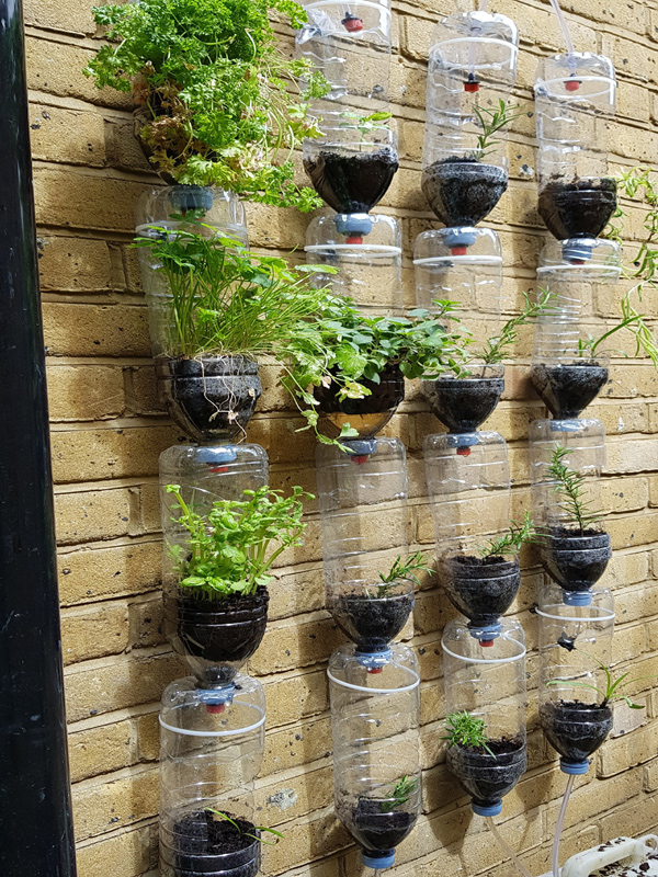 Greenwich & Blackheath Garden Irrigation Systems
