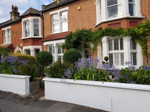 Front Garden Landscaping with Structural Plants
